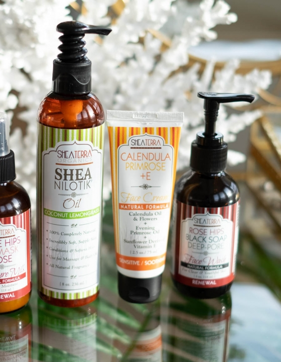 Shea Terra Organics Skincare Products Review
